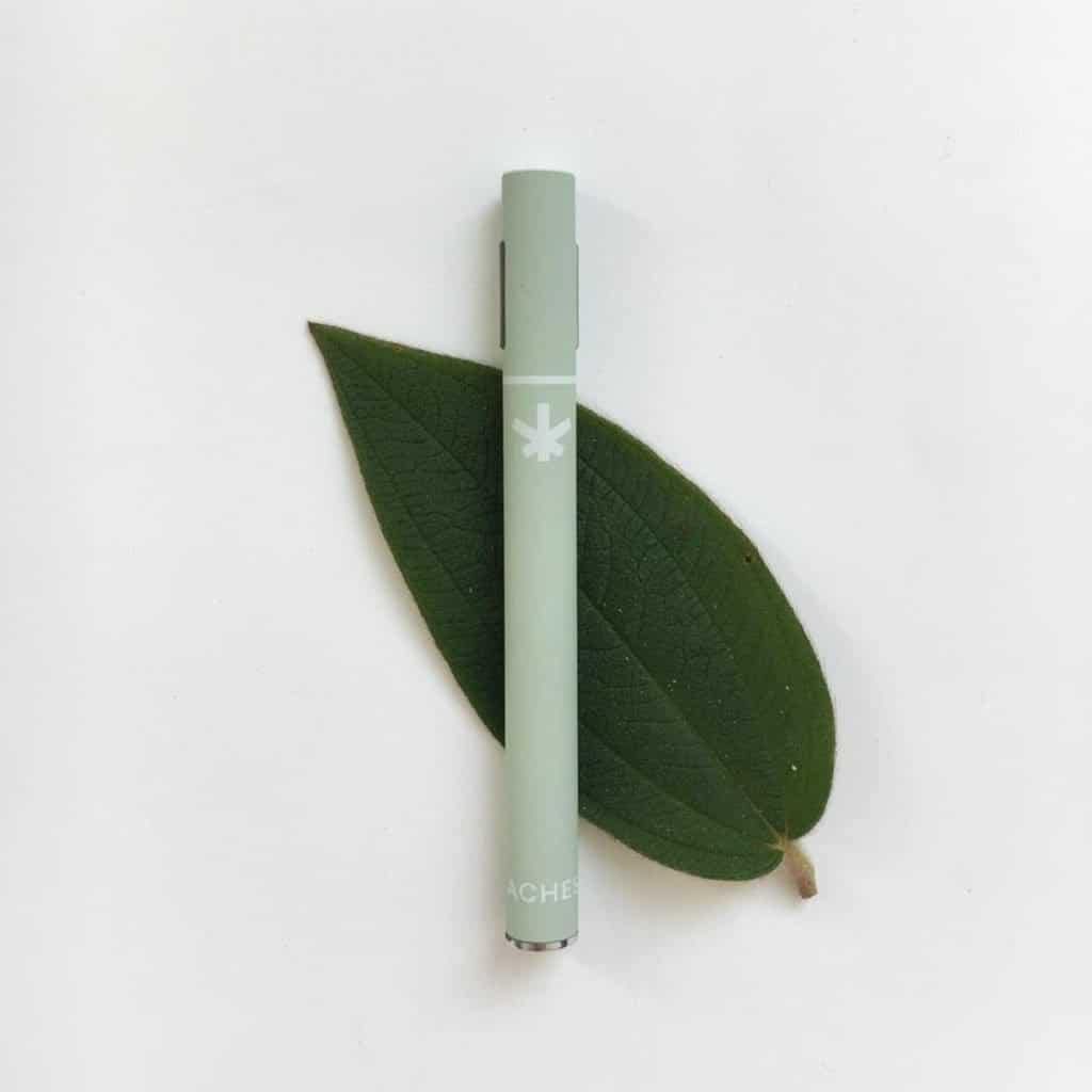 Photo of a Wildflower CBD Vape Pen against the backdrop of a green leaf